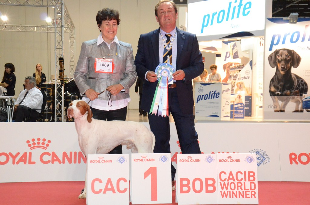 issan championnat du monde milan
